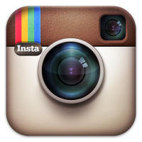 Instagram - bigcityhappypaws